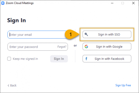 Zoom: Sign In with SSO