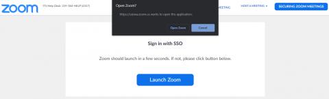 Select Open Zoom