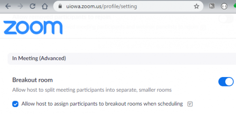 Zoom Profile Settings to allow breakout rooms in meetings